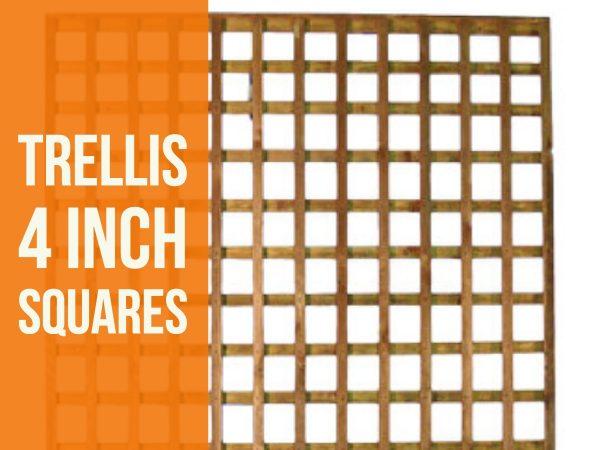 4 inch trellis (1)