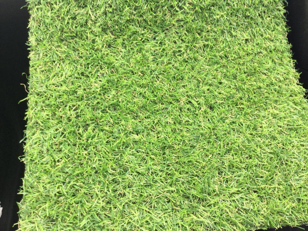 20mm ezilay grass