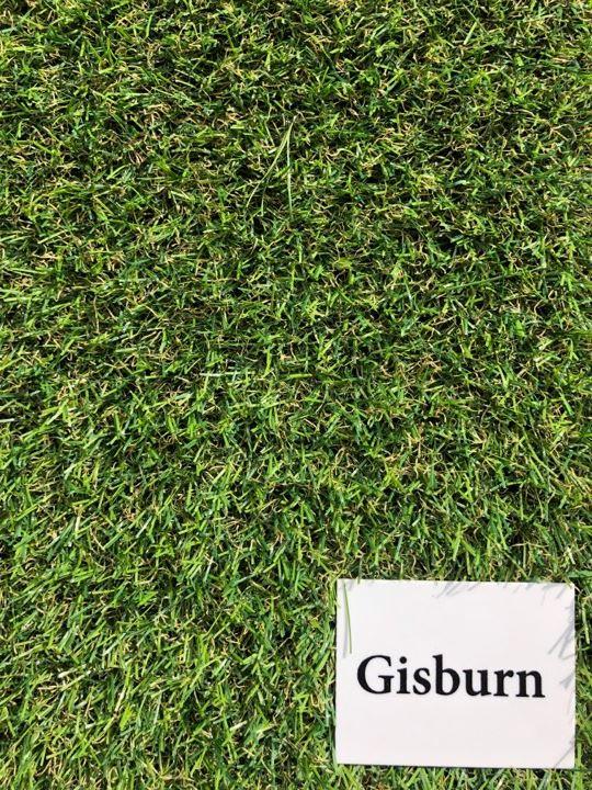 gisburn 20mm