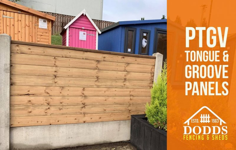 toungue and groove fencing panels dodds shed