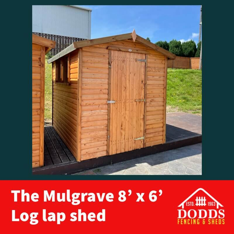 8×6 Mulgrave Shed Dodds (1)